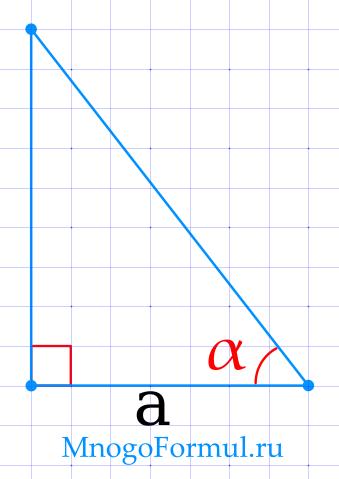 Площадь прямоугольного треугольника через катет и прилежащий угол
