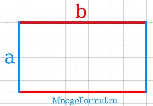 Площадь прямоугольника через стороны